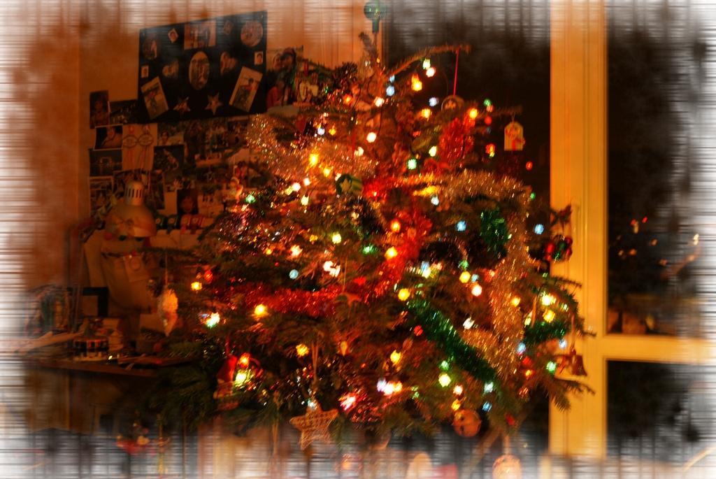 家有聖誕樹