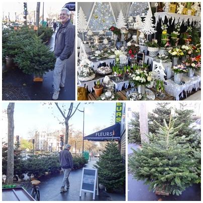 2016 採買聖誕樹