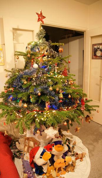 大手筆佈置聖誕樹 + Truffaut賣場展示好看好買