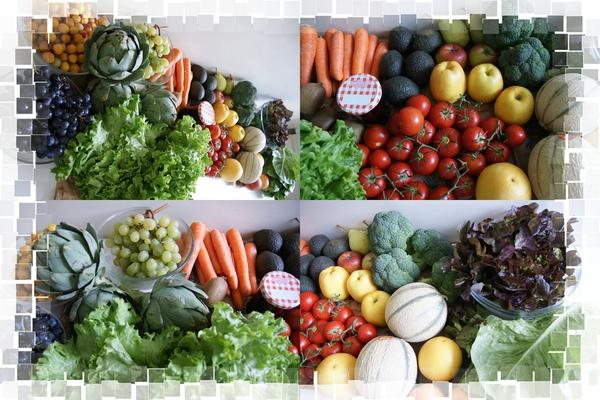 每週新鮮蔬果
